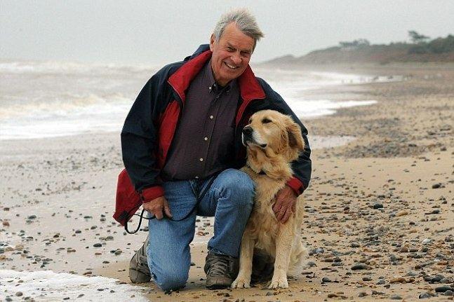 6 лучших пород собак для психологической помощи
