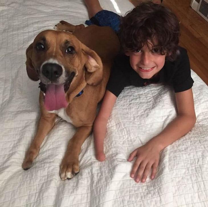 Подборка забавных фото, показывающих, что собака – ещё один ребенок в семье