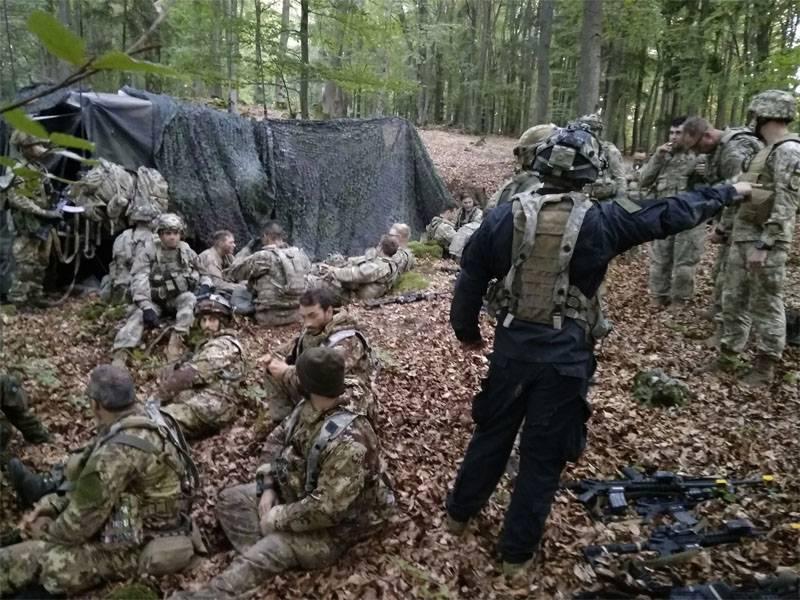 """Десантники ВСУ 9 часов искали спецназ США в лесу. Потом """"захватили"""""""