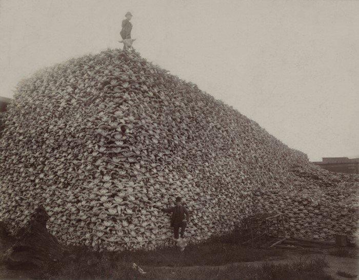 10 жутких фактов, которые докажут, что Дикий Запад на самом деле был диким