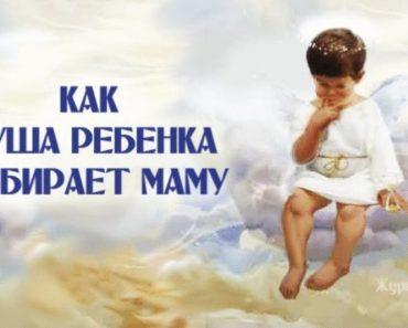 Рождение – не случайность: д…