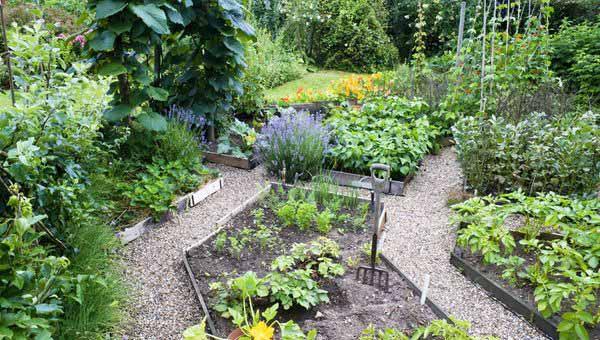 Мой сад и огород своими руками дизайн участка в контакте 34