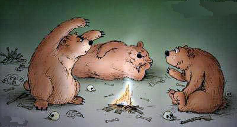 Истинная правда про медведей