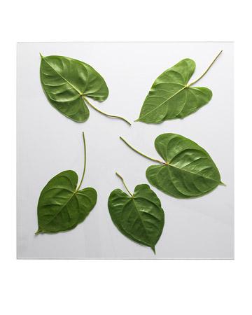 leaf-embossed-tabletop1.jpg