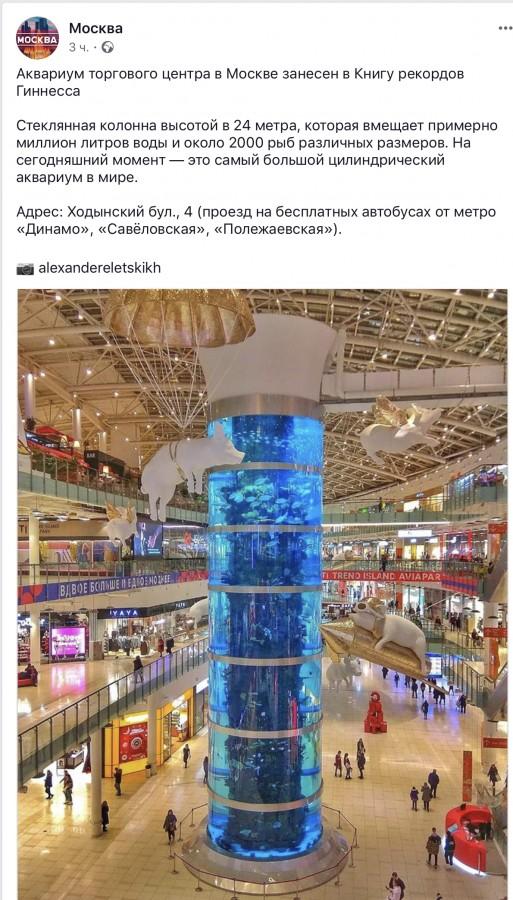 Аквариум торгового центра в Москве занесен в Книгу рекордов Гиннесса