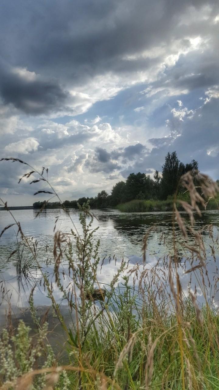 Река Лиелупе... времена года, природа, юрмала