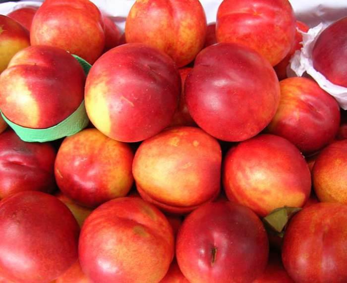 Плоды красновато-зеленые с мякотью светло-розового цвета.