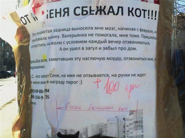 http://mtdata.ru/u16/photo0AF7/20863051194-0/original.jpg#20863051194