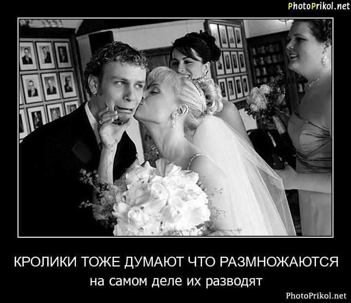 Поздравления кто жениться второй раз 535