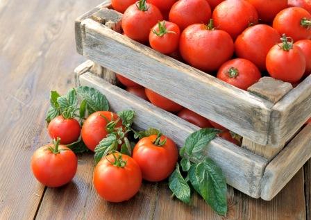 Календарь ухода за томатами по месяцам: