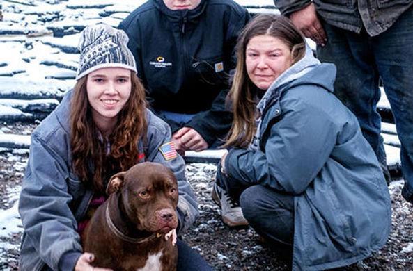 Питбуль Майло спас семью от пожара