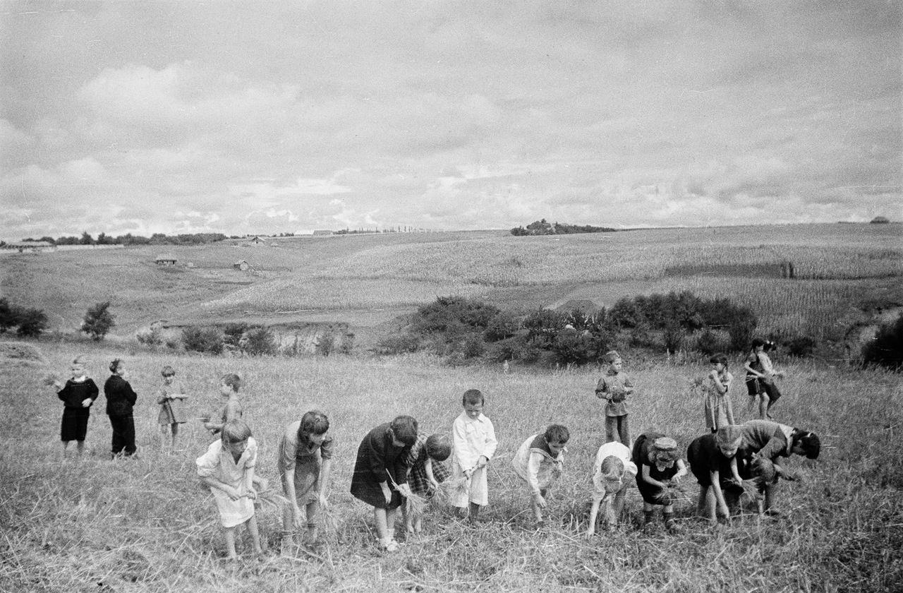 Жизнь колхозников в СССР после войны