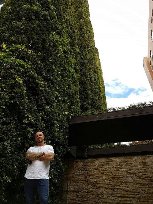Настоящее живое здание в Боготе, которое признано самым большим вертикальным садом в мире