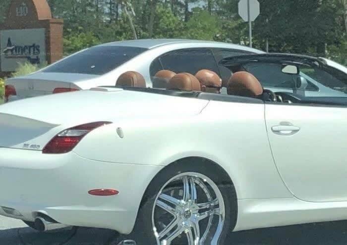 6. В этой машине только один лысый мужчина и такое бывает, обман зрения, приколы, смешные фото, смешные фотографии, странные фото, юмор