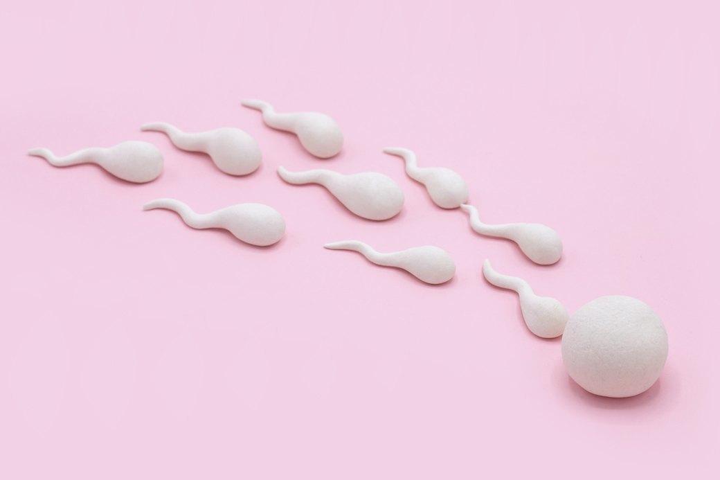 «А если эмбрион украдут?»: 12 дурацких вопросов репродуктологу