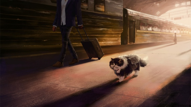 9 волшебных иллюстраций, которые раскрывают всю суть кошачьего характера