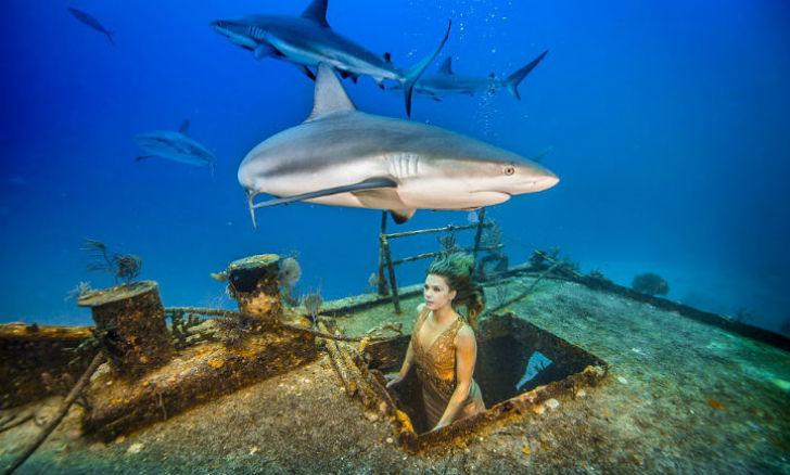 Бразильская модель окунулась в воду с акулами, чтобы защитить морских хищников