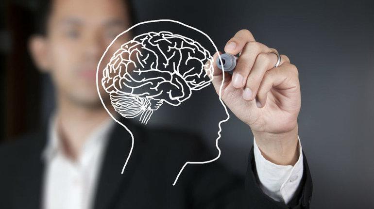Когнитивные тренировки для разных возрастных групп людей