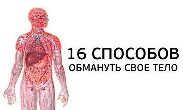16 способов обмануть свое тело.