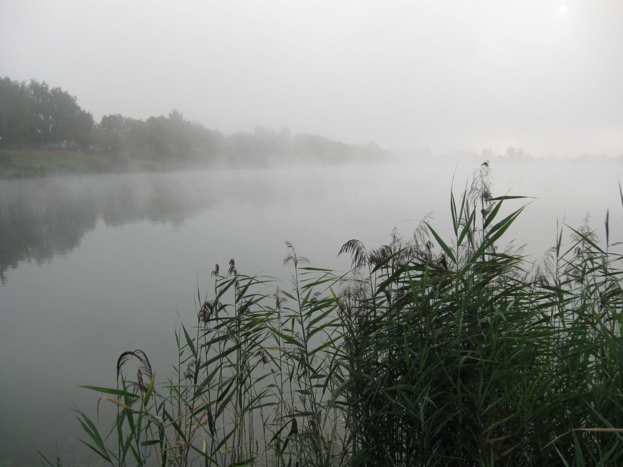 Мгновения нашей жизни: «Утро туманное, утро седое…»