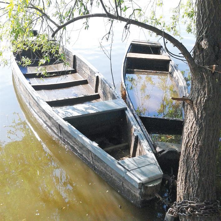 Две лодки