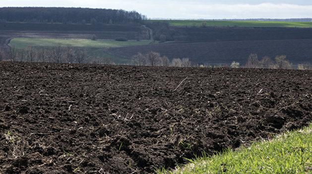 Земельная реформа сметёт с лица земли старую власть и «Слуг народа»