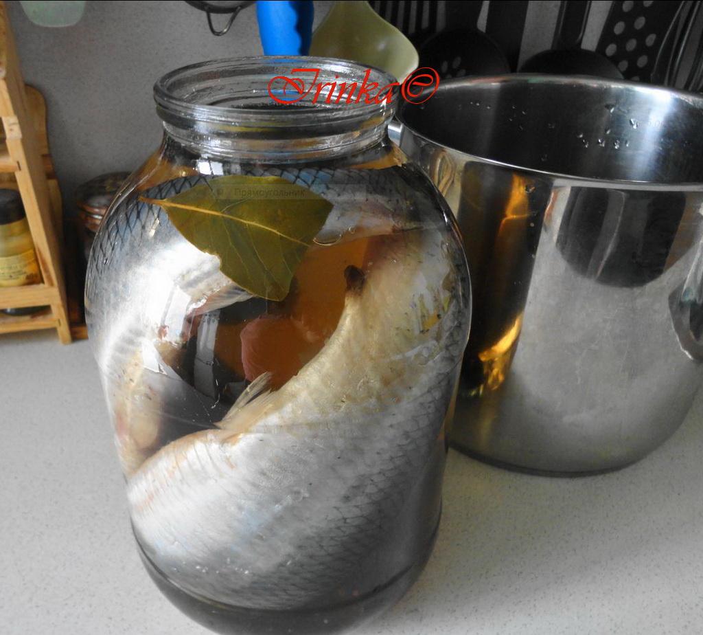 Рассол для сельди в домашних условиях целиком в рассоле 76