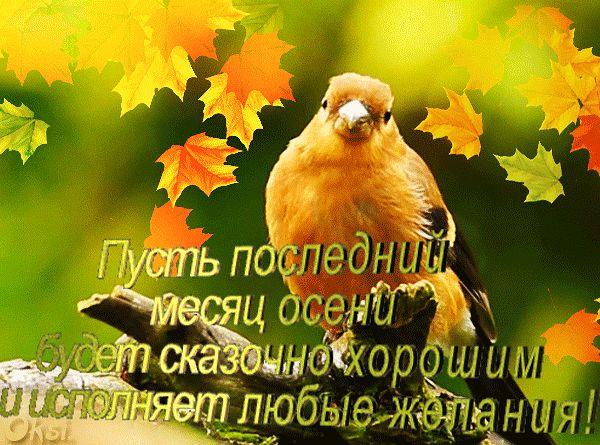 НОЯБРЬ-ПОСЛЕДНИЙ МЕСЯЦ ОСЕНИ.