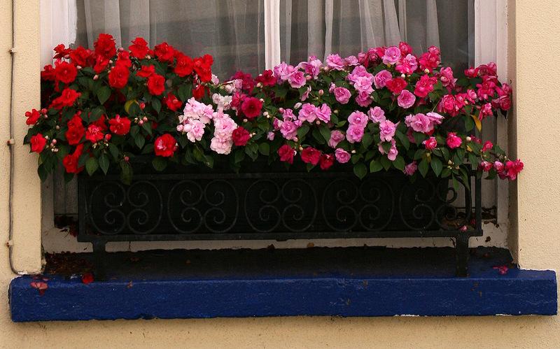 Садовый дизайн - контейнерное садоводство.