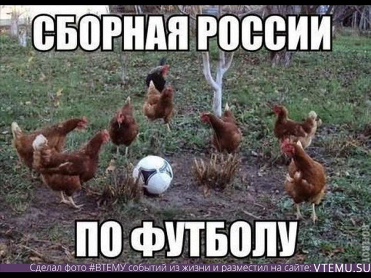 Фото прикол про сборную россии по футболу 3