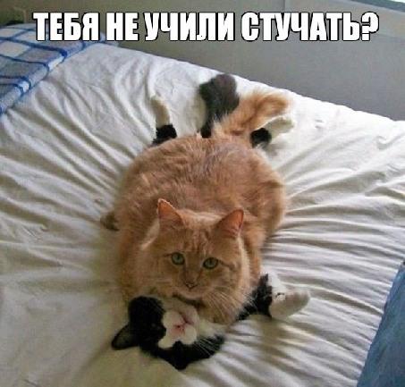 ой! извините!!!