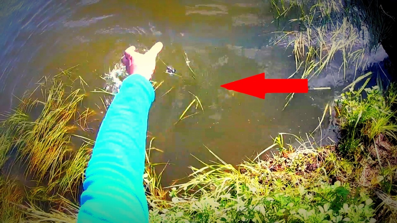 как завести червей на рыбалку