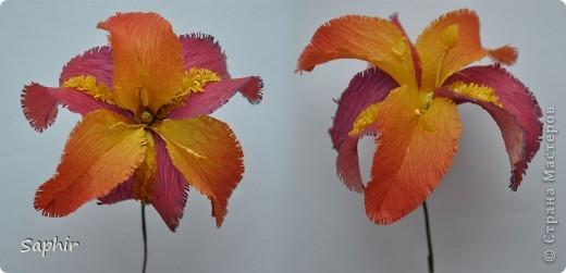 Поделка изделие Бумагопластика цветы из гофробумаги  мастер-класс Бумага гофрированная фото 10