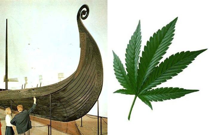 Конопля в курганах викингов: сырье для ткани или трава для «особых» целей