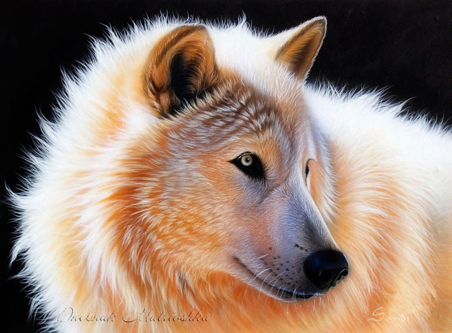 Awesome realistic drawings of animals 01
