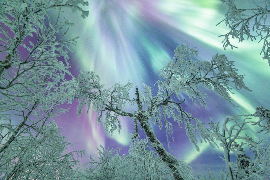 Почему Лапландия волшебное место