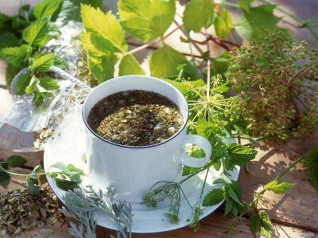 Отвары лекарственных растений для лечения ЖКТ