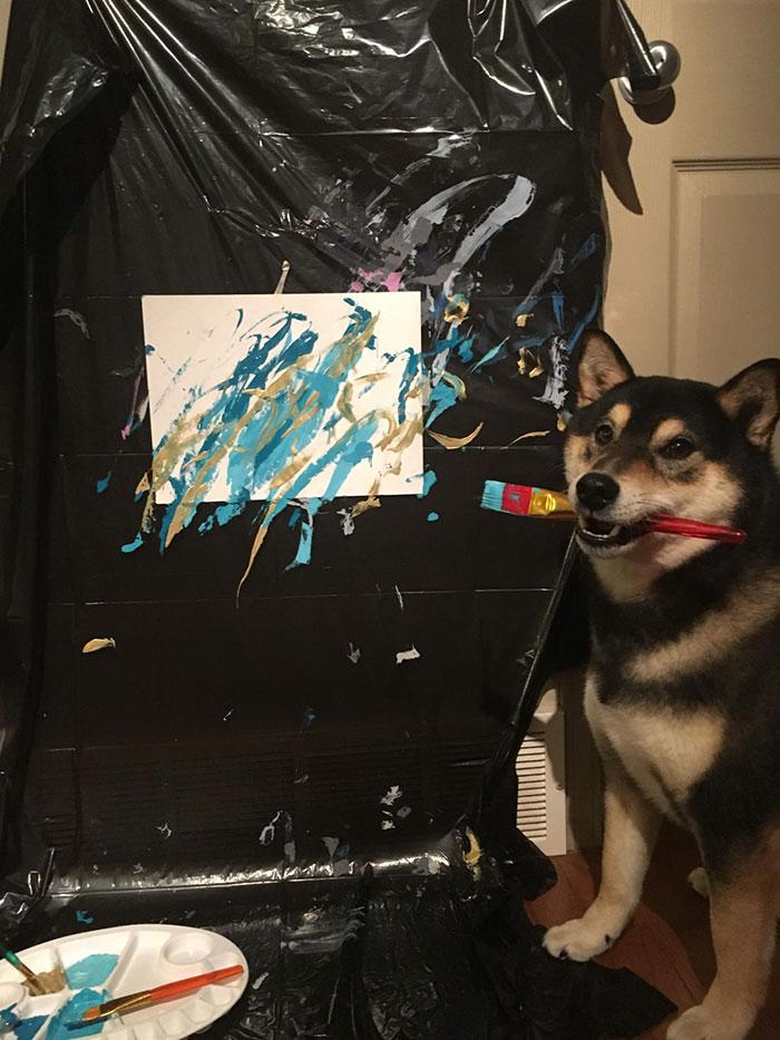 Пес из Канады зарабатывает деньги на собственных картинах