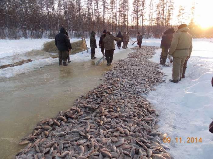 Мунха - традиционная зимняя рыбалка якутов