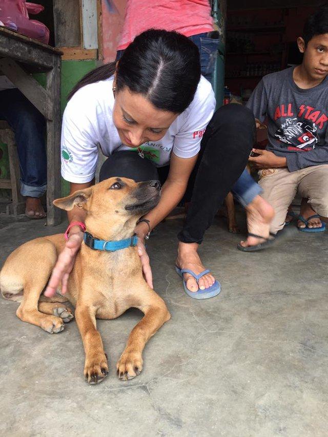 Женщина борется с местным населением, которое совсем не ценит жизнь собак