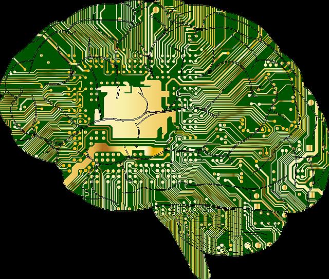 Ученые нашли в животе у людей еще один, мощный и загадочный мозг