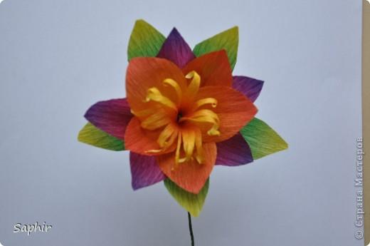 Поделка изделие Бумагопластика цветы из гофробумаги  мастер-класс Бумага гофрированная фото 12