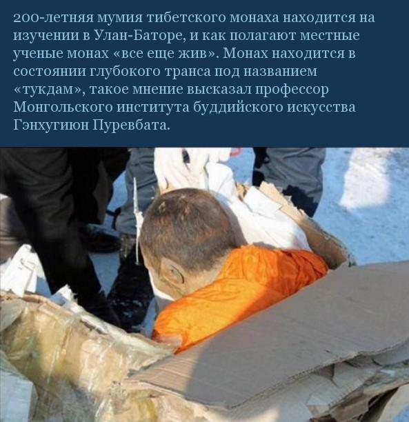 """В Улан-Баторе изучают мумию 200-летнего монаха,который """"все еще жив""""(3 фото)"""