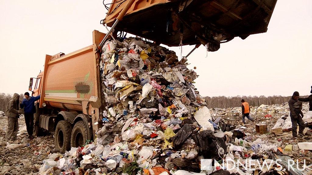 Мусорная катастрофа на северо-западе России: 2 млн тонн токсичных отходов и тысячи незаконных свалок