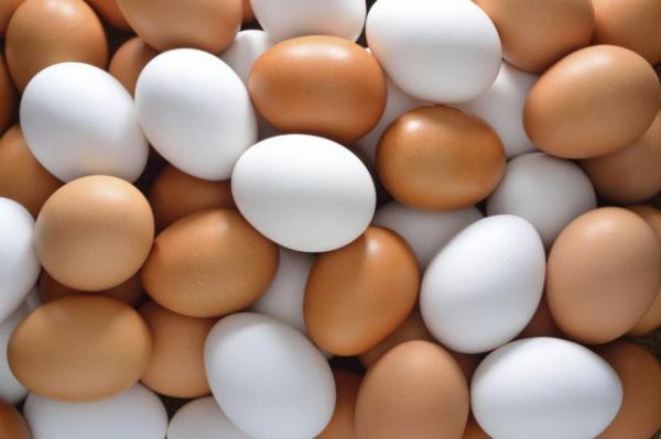 Вся правда о куриных яйцах
