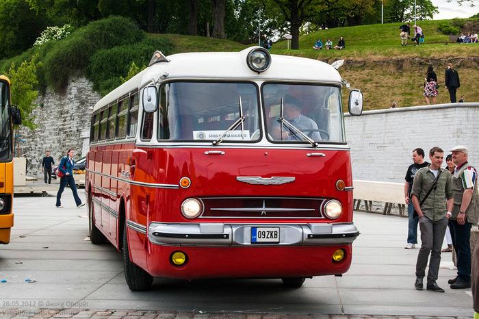 Ikarus 55 / Lux