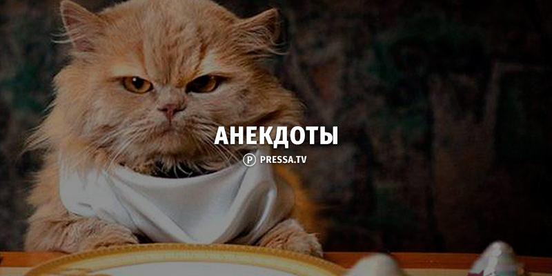 Субботняя 30-ка анекдотов