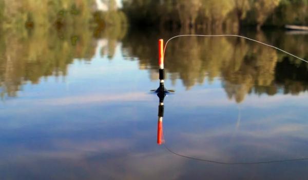Как выбрать глубину ловли: простое правило, которое не оставит без улов