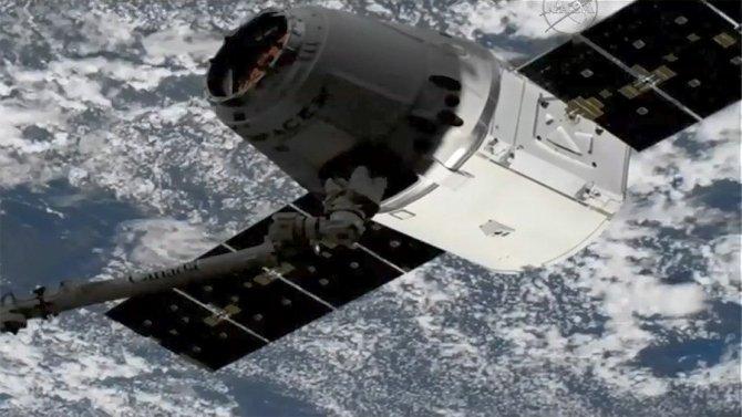 """Дарья Чередник: """"Русские расисты"""" уже в космосе? НАСА будет разбираться"""