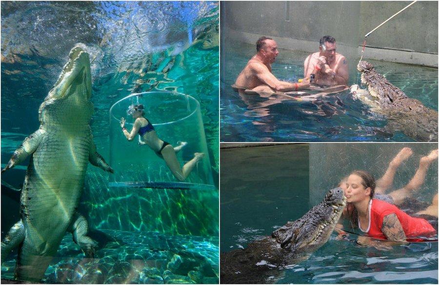 Экстрим с крокодилами